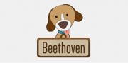 boton-beethoven