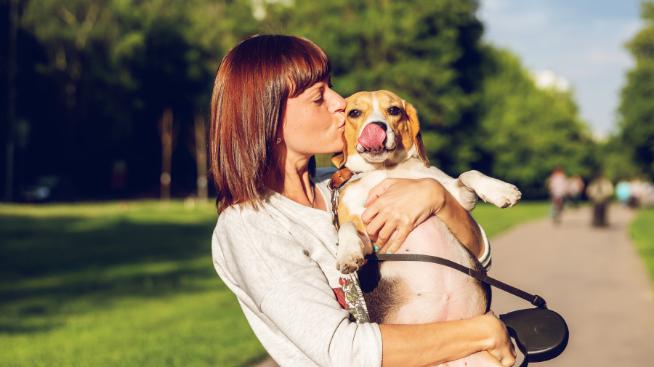 Cuida a tus mascotas en cuarentena